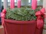 Weihnachtliche Impressionen in der Talkirche und in der Wenschtkirche 25. und 26. Dezember 2019