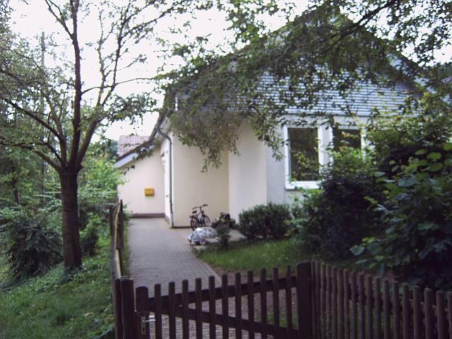 Kita-Sohlbach-Buchen-1